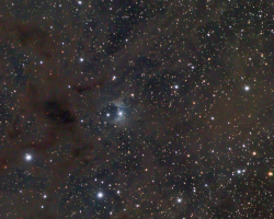 Vdb16 Diffuse Nebula on Dust
